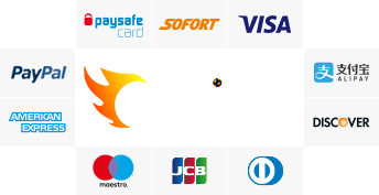 safefutcoins pay method